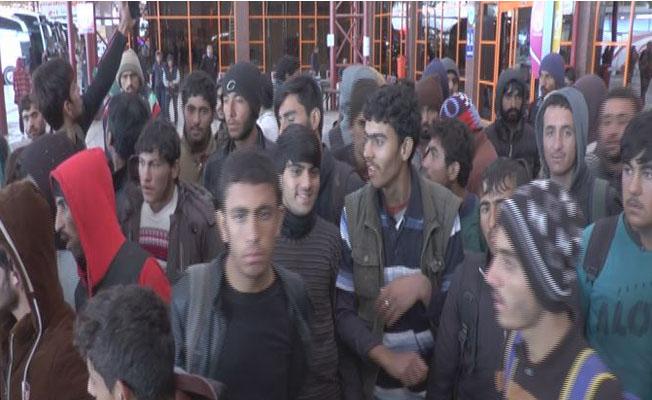 Kaçak göçmenlerin yürek burkan dramı!...