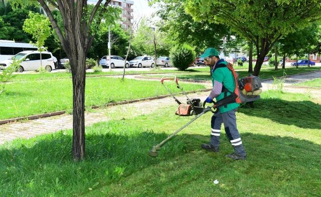 Yeşilyurt'ta yaz temizliği