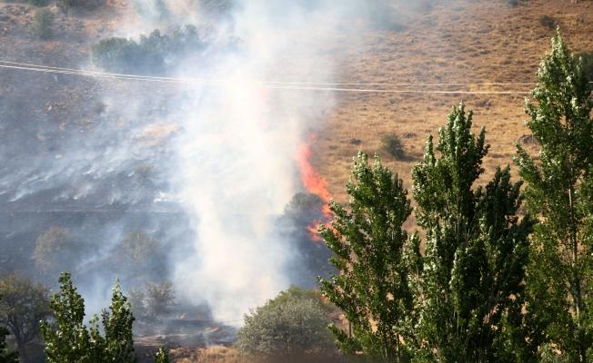 Hekimhan'da 50 hektarlık alanda yangın!