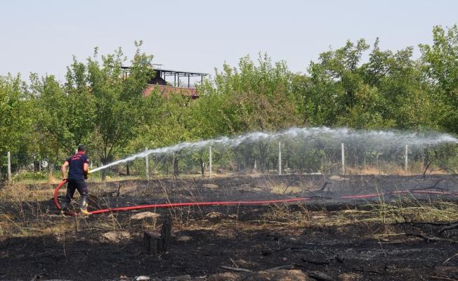 Yangın 10 hektar alanı küle çevirdi!