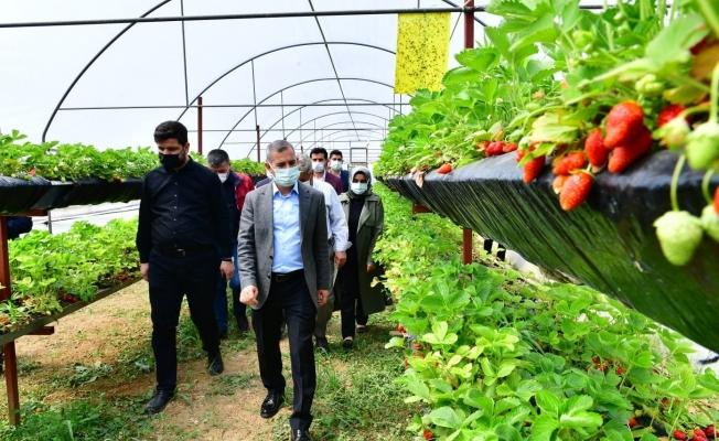 Çınar ''Tarım belediyeciliğinde markalaşma hedefimize sağlam adımlar atıyoruz''