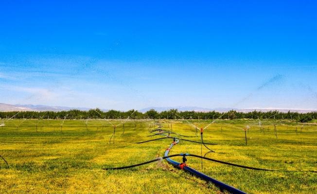 Malatya'da bitki üretim merkezi oluşturuldu