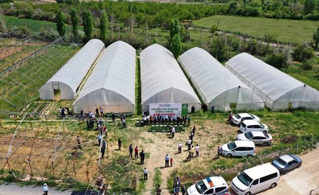 Yeşilyurt Belediyesi, 200 bin fideyi ücretsiz olarak çiftçilerle buluşturuyor