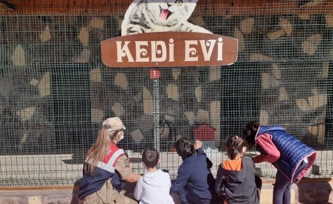 Down sendromlu çocukların hayvan ilgisi