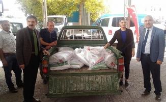 Çiftçilere yüzde 50 hibe destekli yonca tohumu dağıtıldı