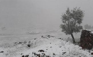 Malatya'da kar yağışı! Yüksek kesimler beyaza büründü...