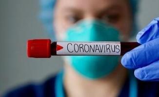 Malatya'da düğüne katılan 19 kişide koronavirüs tespit edildi!