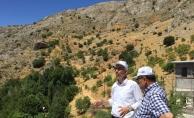 Arapgir yeni bir turizm merkezi olma yolunda ilerliyor!..