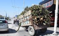 Çevre yolunda odun yüklü traktör devrildi