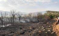 Ormanlık alandaki yangın imece usulü söndürüldü
