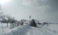Kar nedeniyle kapanan 698 mahalle yolu ulaşıma açıldı