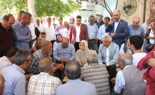 """""""Kayısı Birlik'in yeniden kurulması için Bakan Pakdemirli'yle konuştuk"""""""