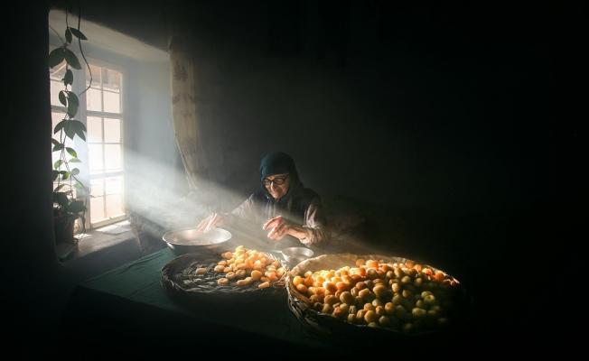 Battalgazi Kayısı Hasadı Fotoğraf Yarışması kazananları belli oldu