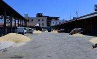 Malatya'nın kanayan yarası: Buğday pazarı!..